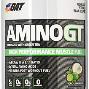 GAT AMINO GT ENERGIZED WITH GREEN TEA 91gm HIGH PERFORMANCE MUSCLE FUEL 91gm - GAT SPORT www.oms99.in