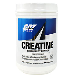 GAT SPORT CREATINE HIGH QUALITY POWDER ESSENTIALS 1000gm - GAT SPORT www.oms99.in