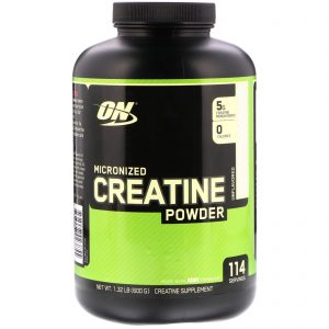 ON MICRONIZED CREATINE POWDER 600gm - OPTIMUM NUTRITION www.oms99.in